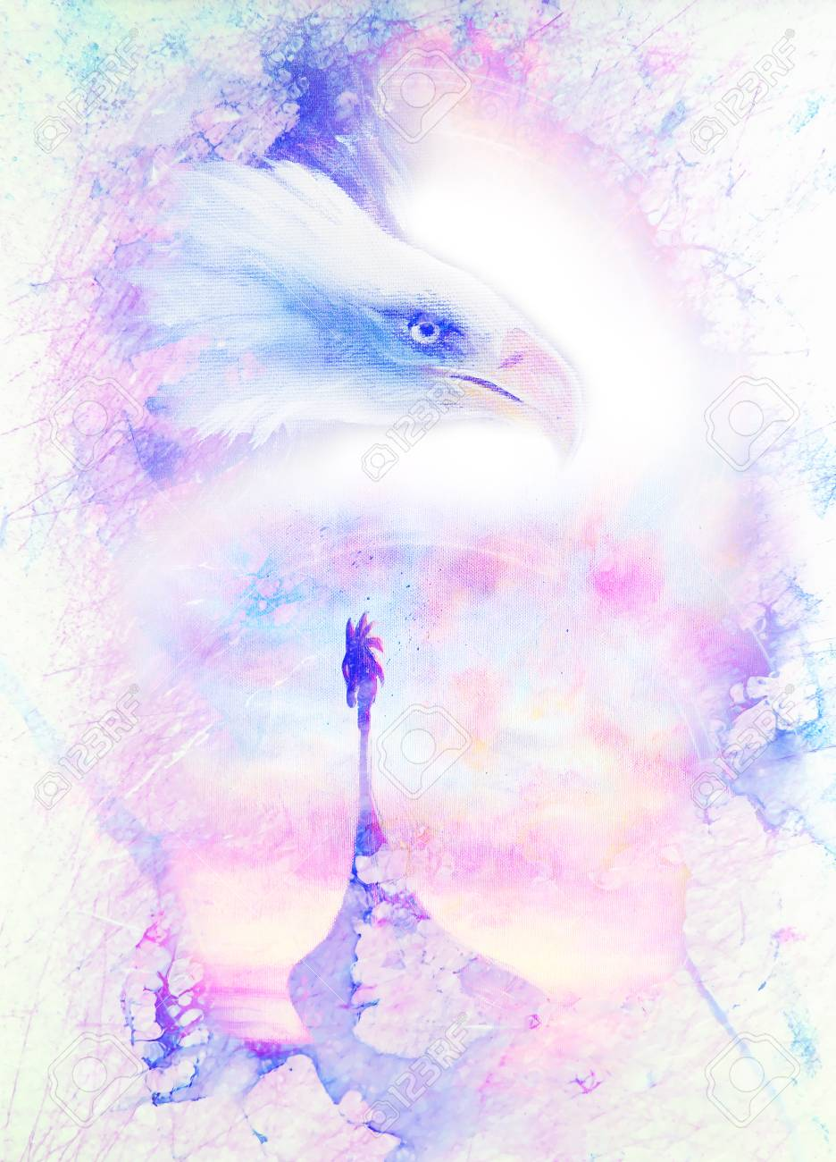 Painting Head Of American Eagle And Viking Boat On An Abstract
