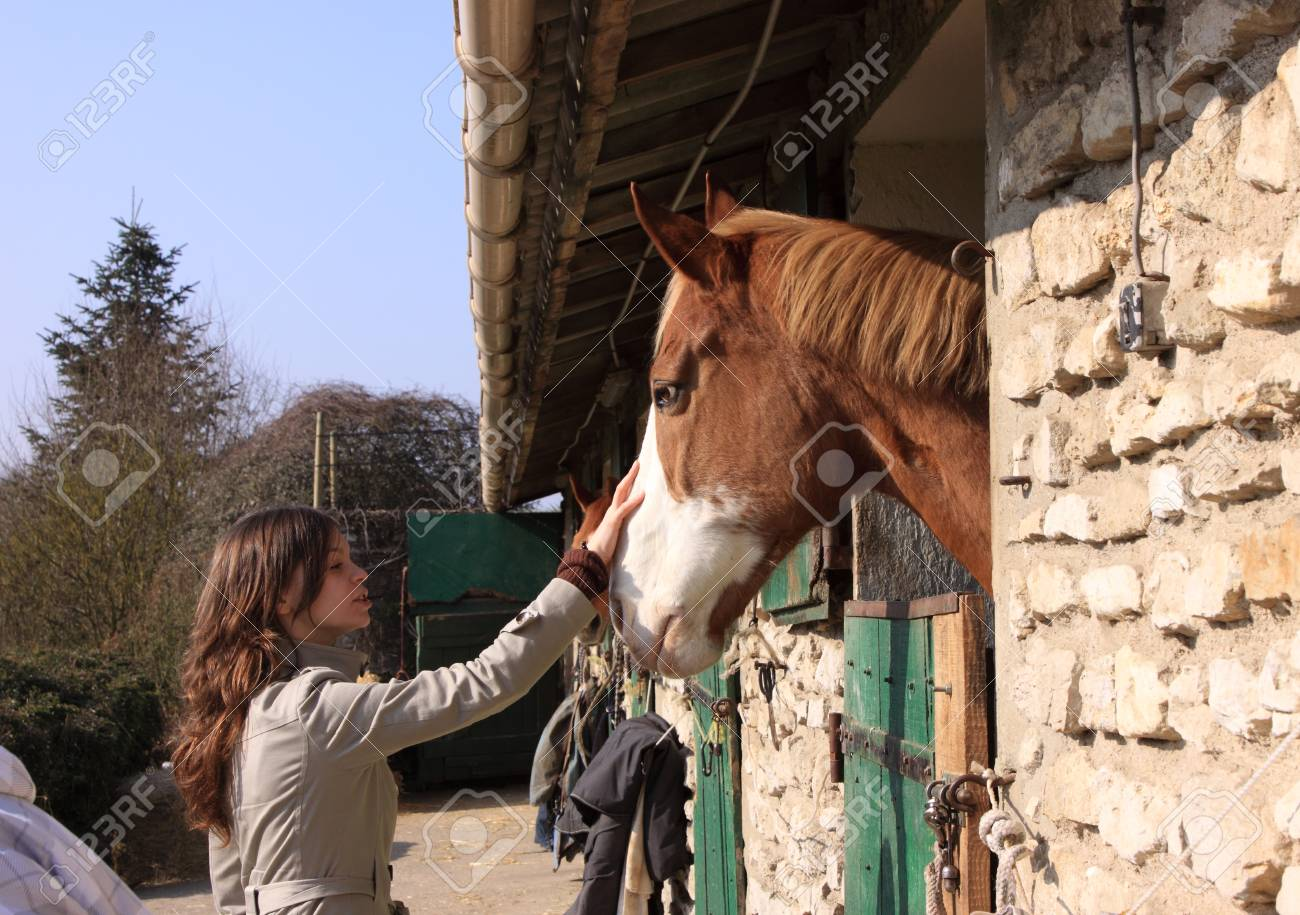 pretty young woman giving food to horses Stock Photo - 9302450