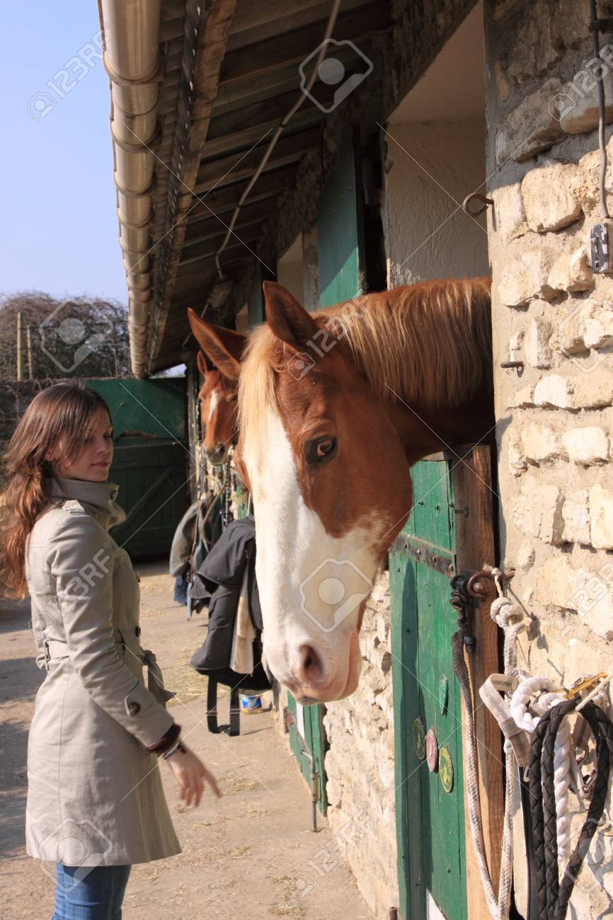 pretty young woman giving food to horses Stock Photo - 9302453