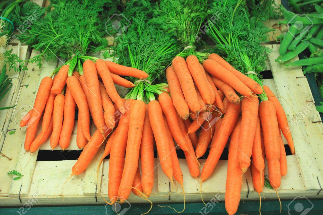 bunches of fresh carrots on a market stall Stock Photo - 10767454