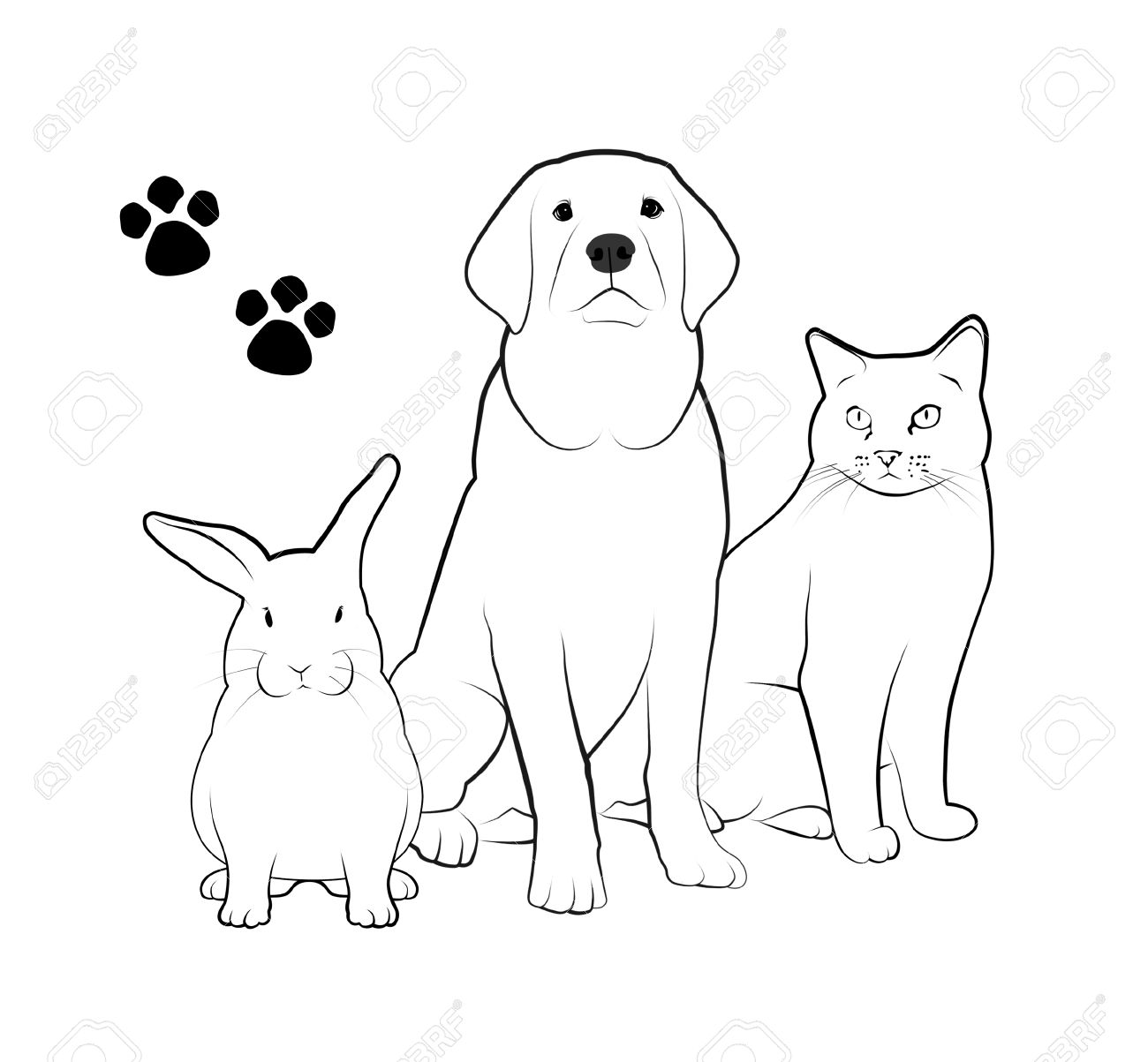 Line drawings of dog, cat, and rabbit. - 71819612