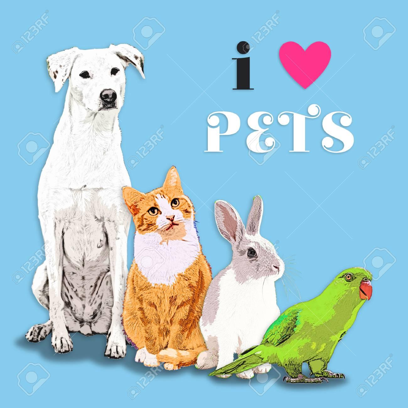 ペット愛好家のための犬猫うさぎオウムのイラスト の写真素材