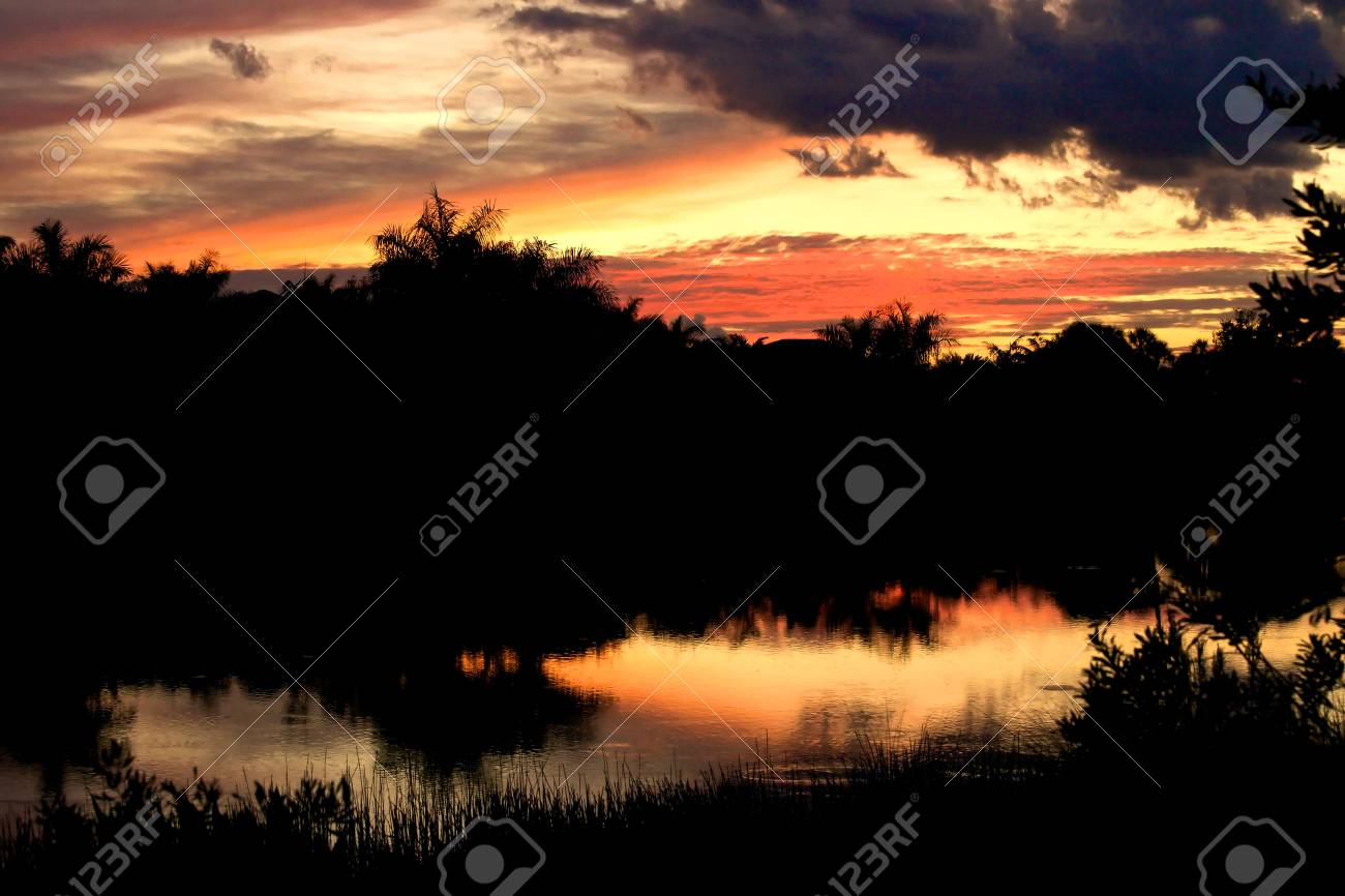 A beautiful sunset glow with trees that are backlit Stock Photo - 6389561
