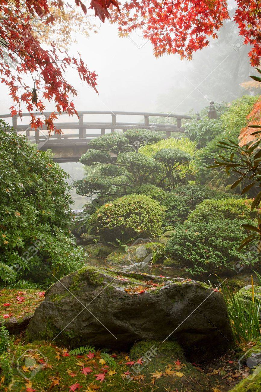 Rock and Bridge under the Maple Tree at Japanese Garden Stock Photo - 10725988