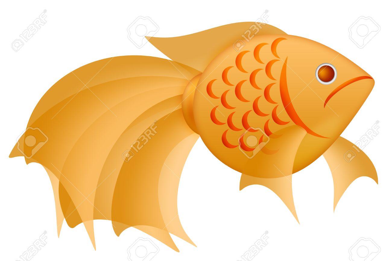 Fancy Goldfish Clipart Illustration Isolated On White Background ...