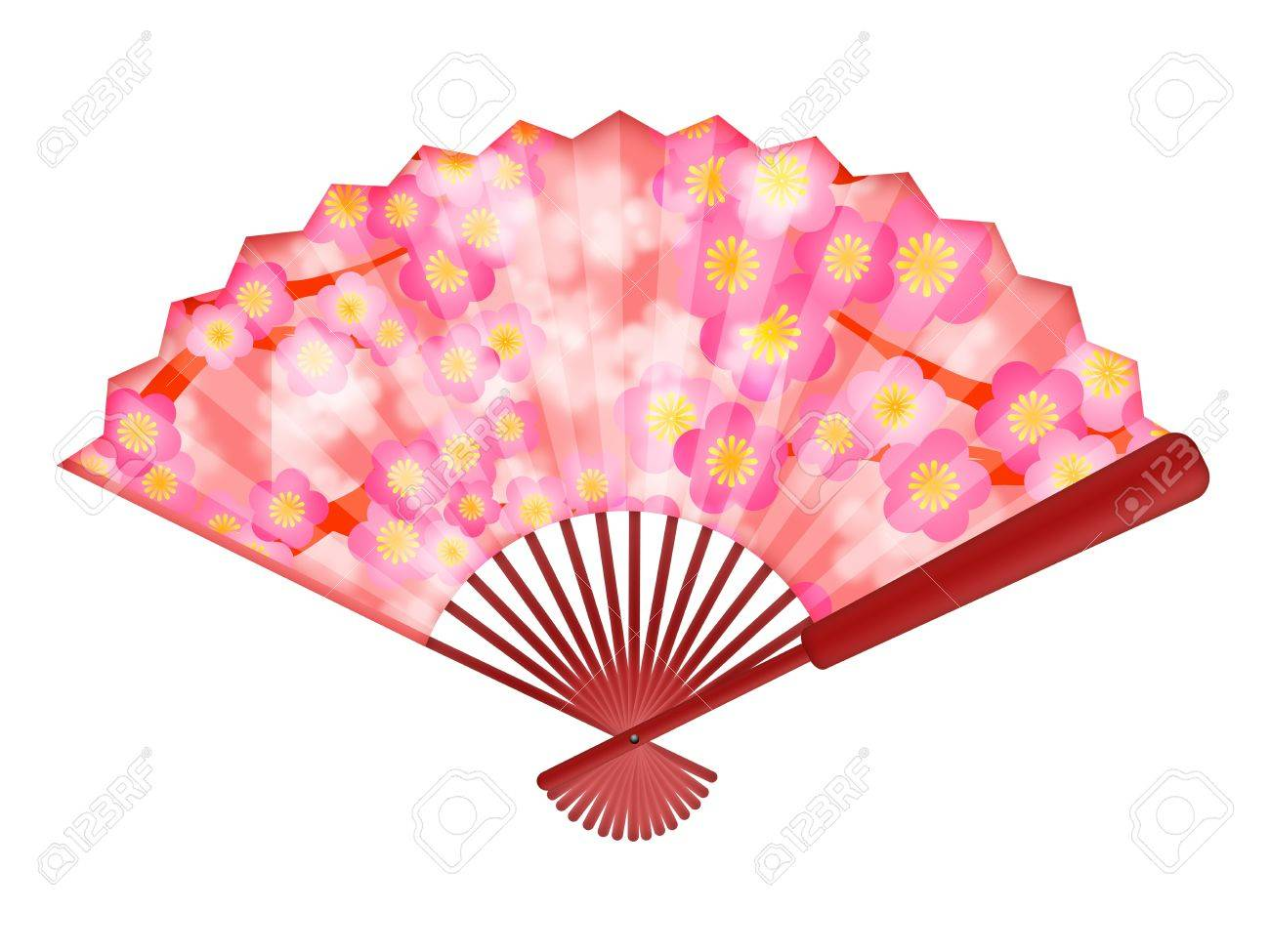 Chinese Folding Fan with Cherry Blossom Flowers in Spring Illustration Isolated on White Background Stock Photo - 11585755