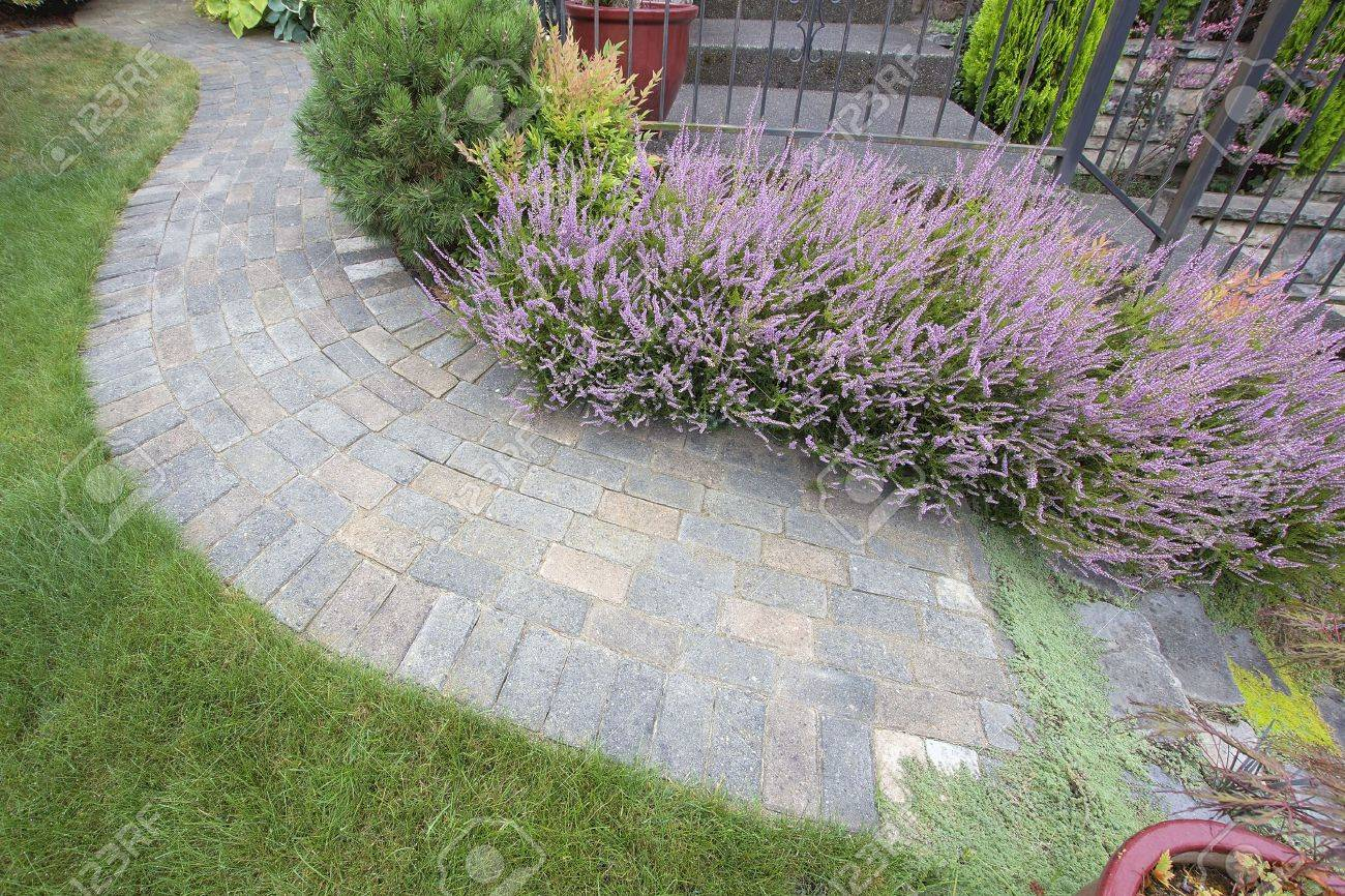 Front Yard Garden Curve Brick Paver Path with Green Grass Lawn Flowering Plants Trees and Shrubs Top View Stock Photo - 21642597