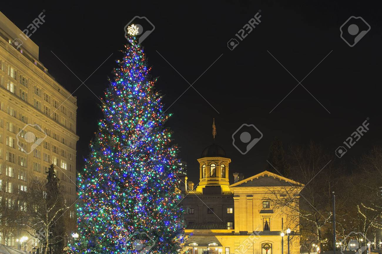 Portland Christmas Tree.Christmas Holiday Tree At Pioneer Courthouse Square In Portland