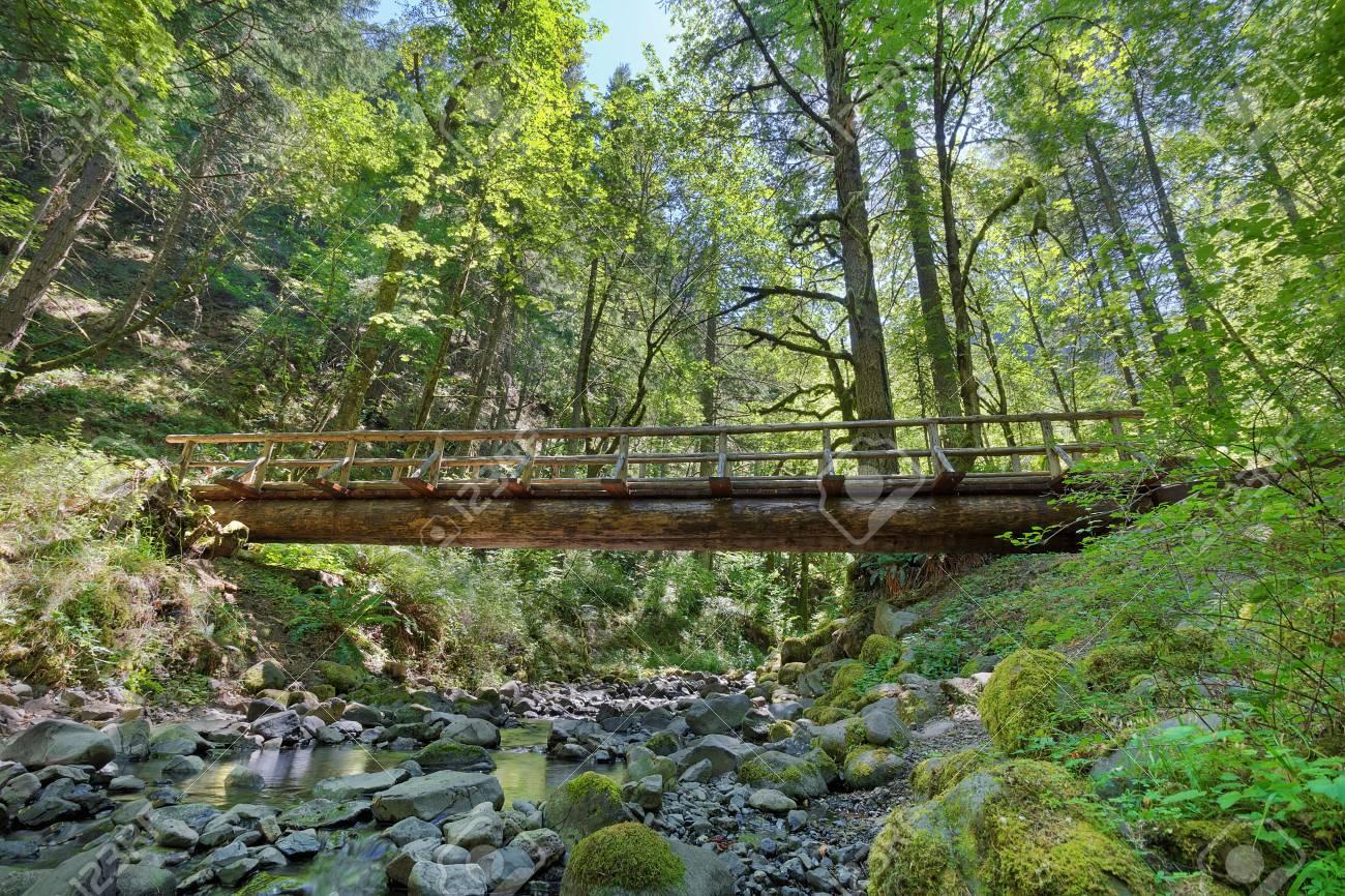 Wood Log Bridge Structure Over Gorton Creek Hiking Trail in Columbia