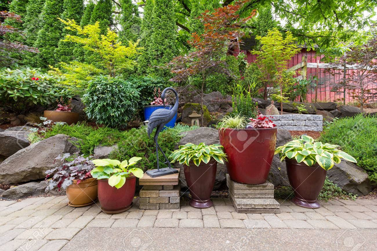 house garden backyard with hardscape and softscape with plants