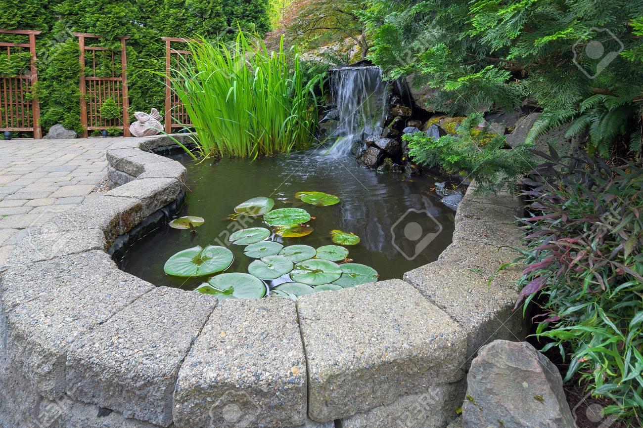 Jardin Potager étang avec des plantes aquatiques cascade brique paver patio  treillis aménagement paysager
