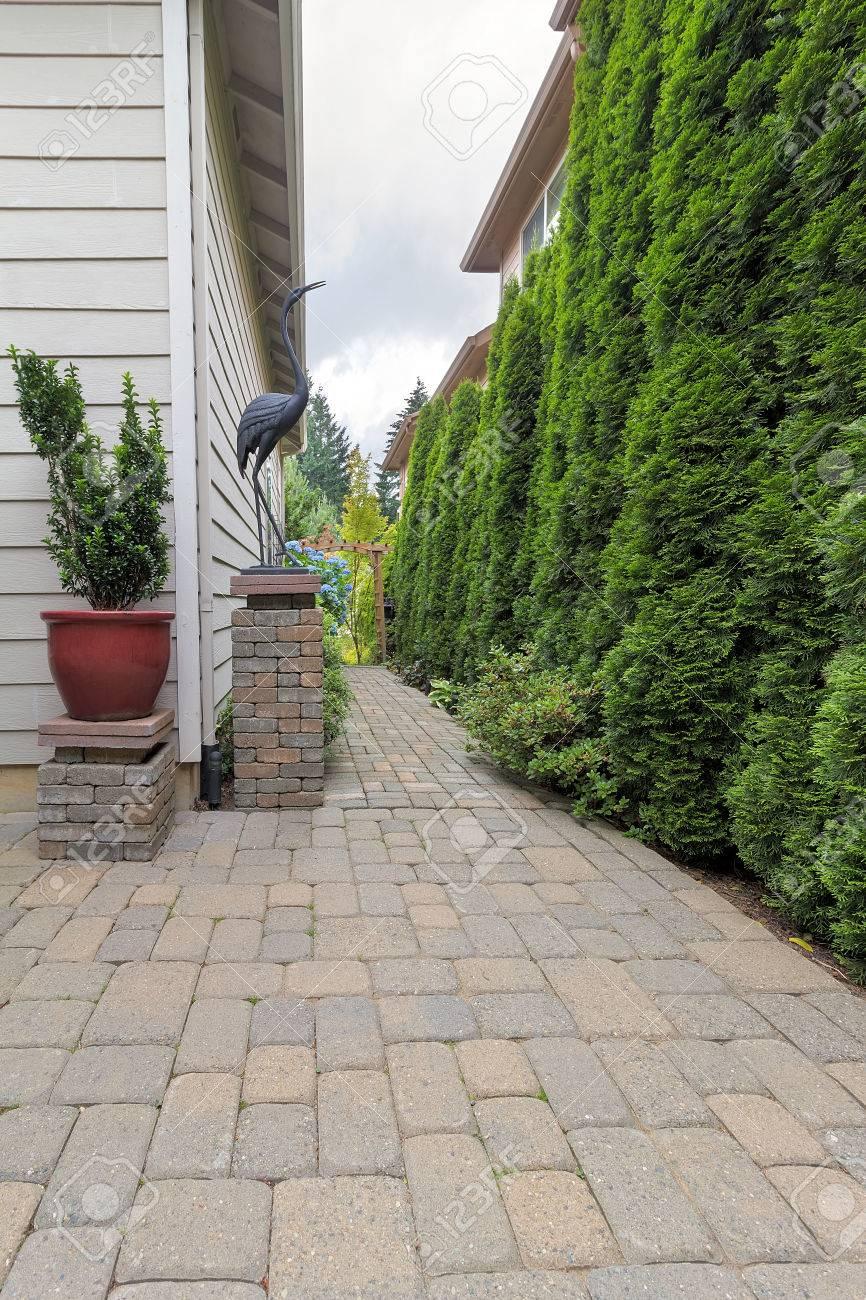 Garten Hinterhof Terrasse Und Ziegel Fertiger Pfad Mit Topfpflanze ...