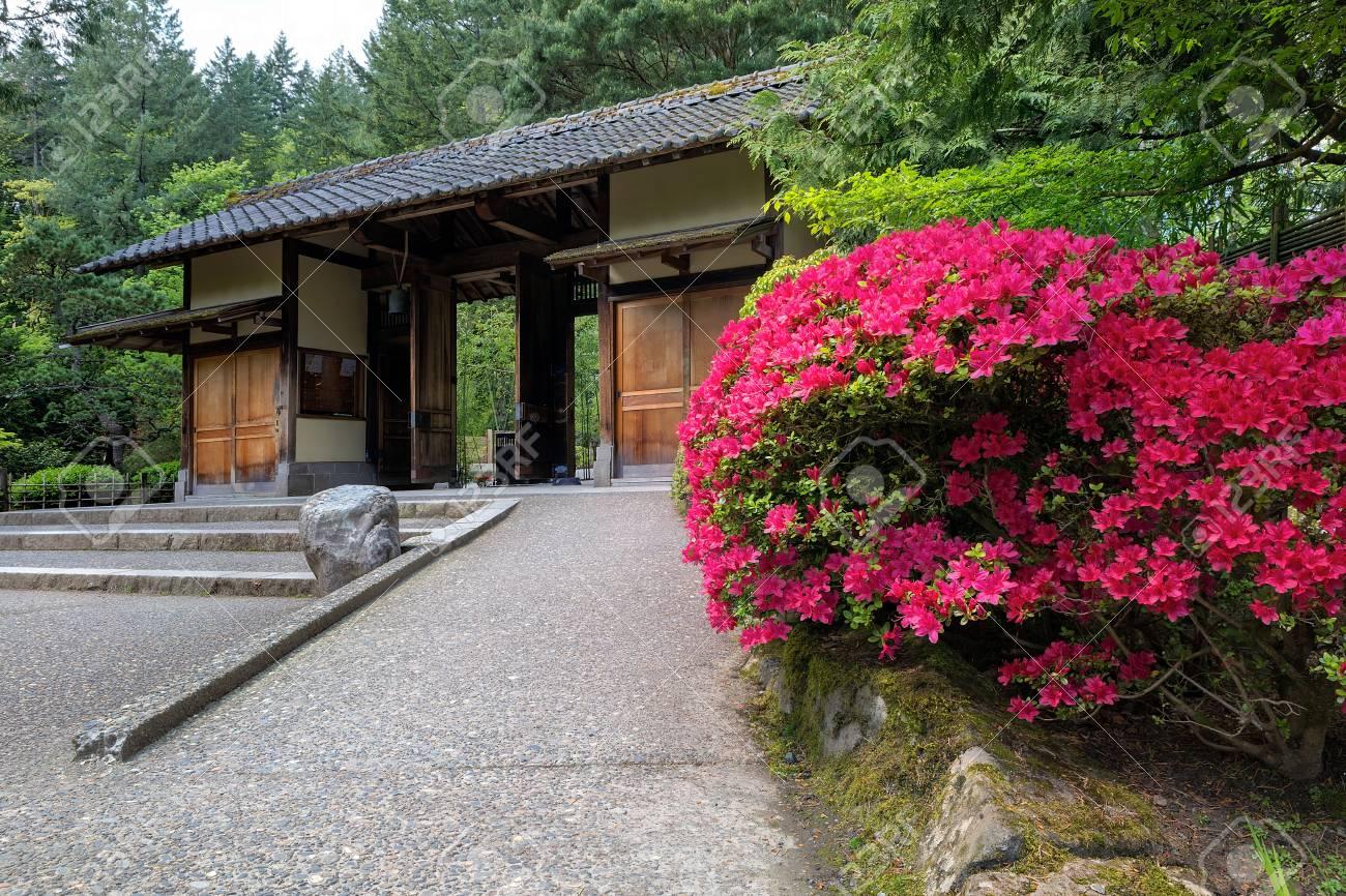 Porte d\'entrée au jardin japonais de Portland avec des azalées en fleurs au  printemps