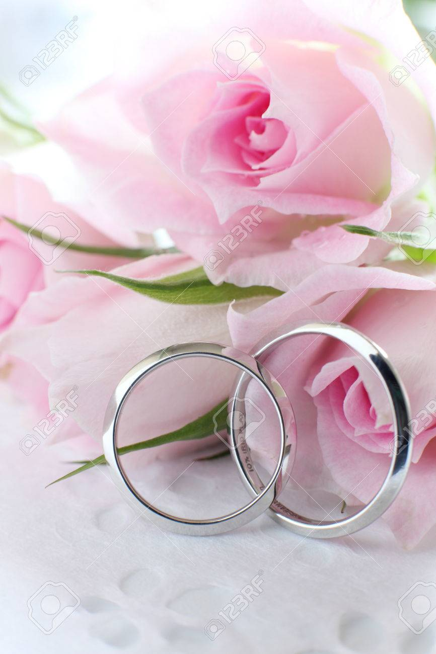 Pink Roses And Wedding Rings Stock Photo, Picture And Royalty Free ...