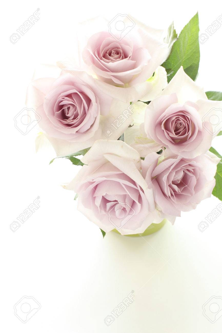 Purple Roses Bouquet For Wedding Background Image Stock Photo