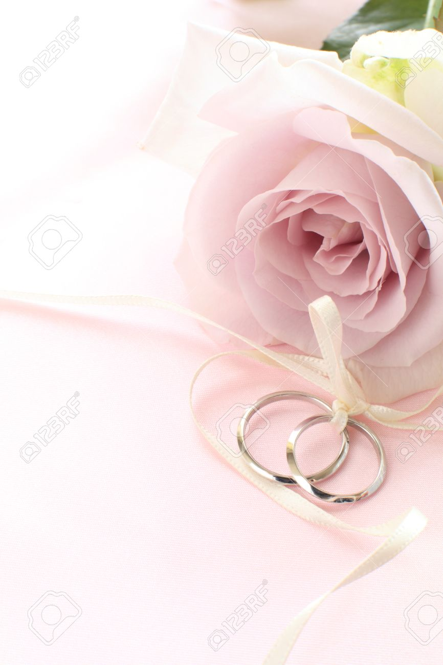 Close Up Of Single Flower Purple Roses And Wedding Rings Stock Photo ...
