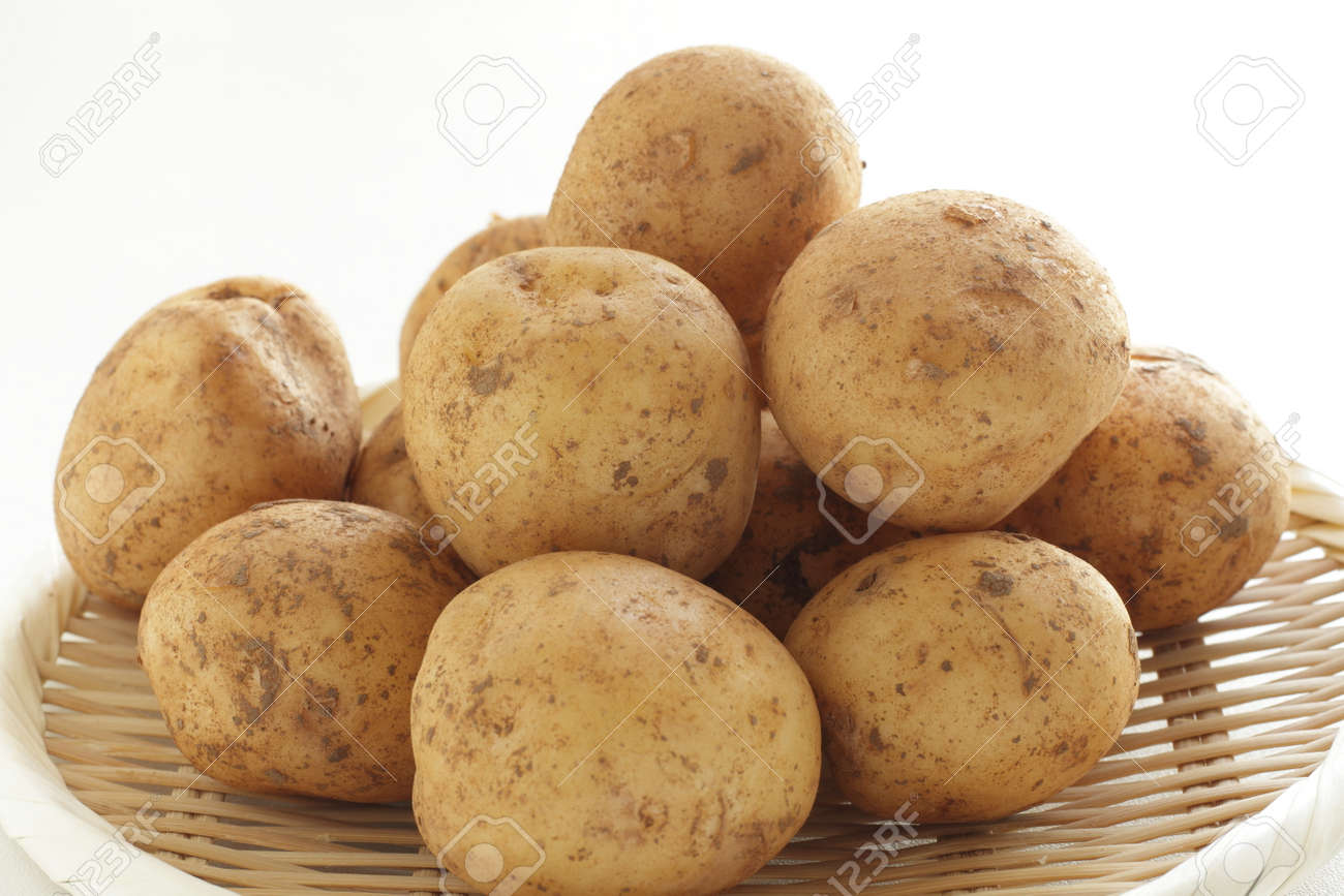 freshness new potato from Japan for spring food ingredient - 169245977