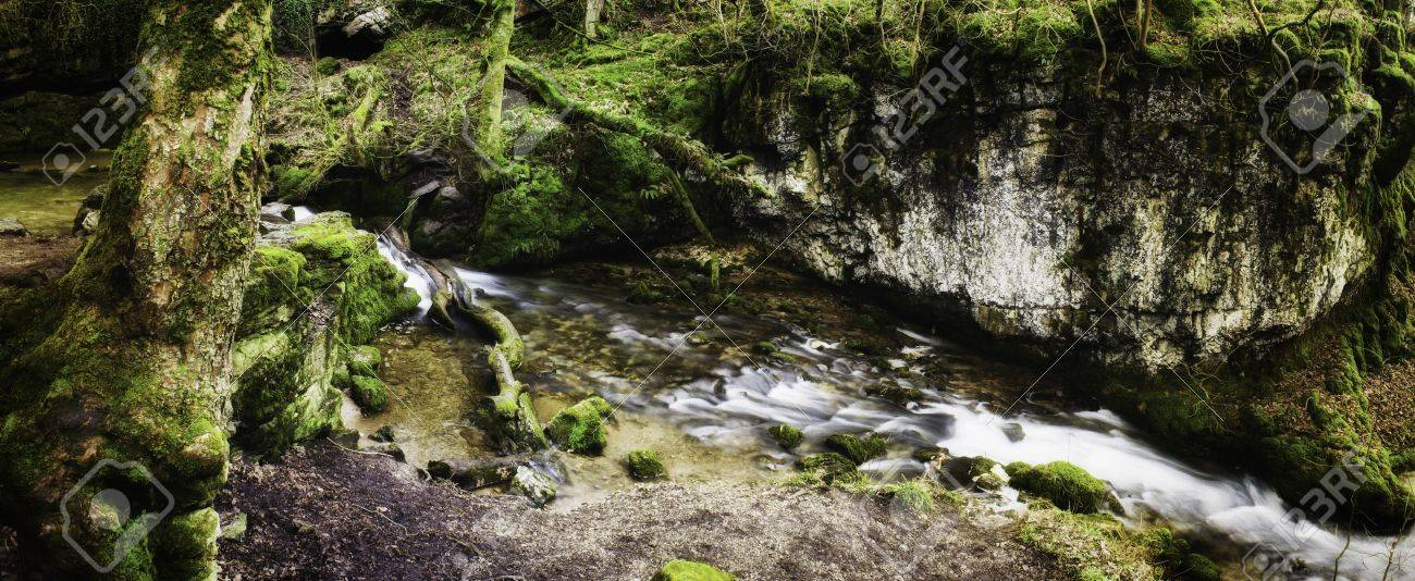 Panoramic background view of a scenic stream flowing through lush green woodland Stock Photo - 15683113