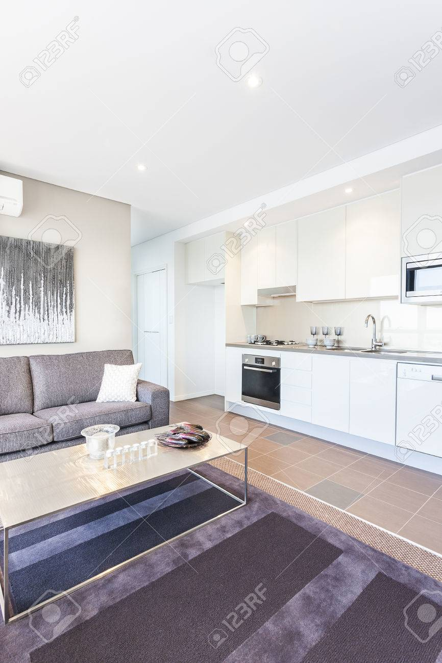 Kitchen With White Color Near Sofa And Carpet, Modern Room Including ...