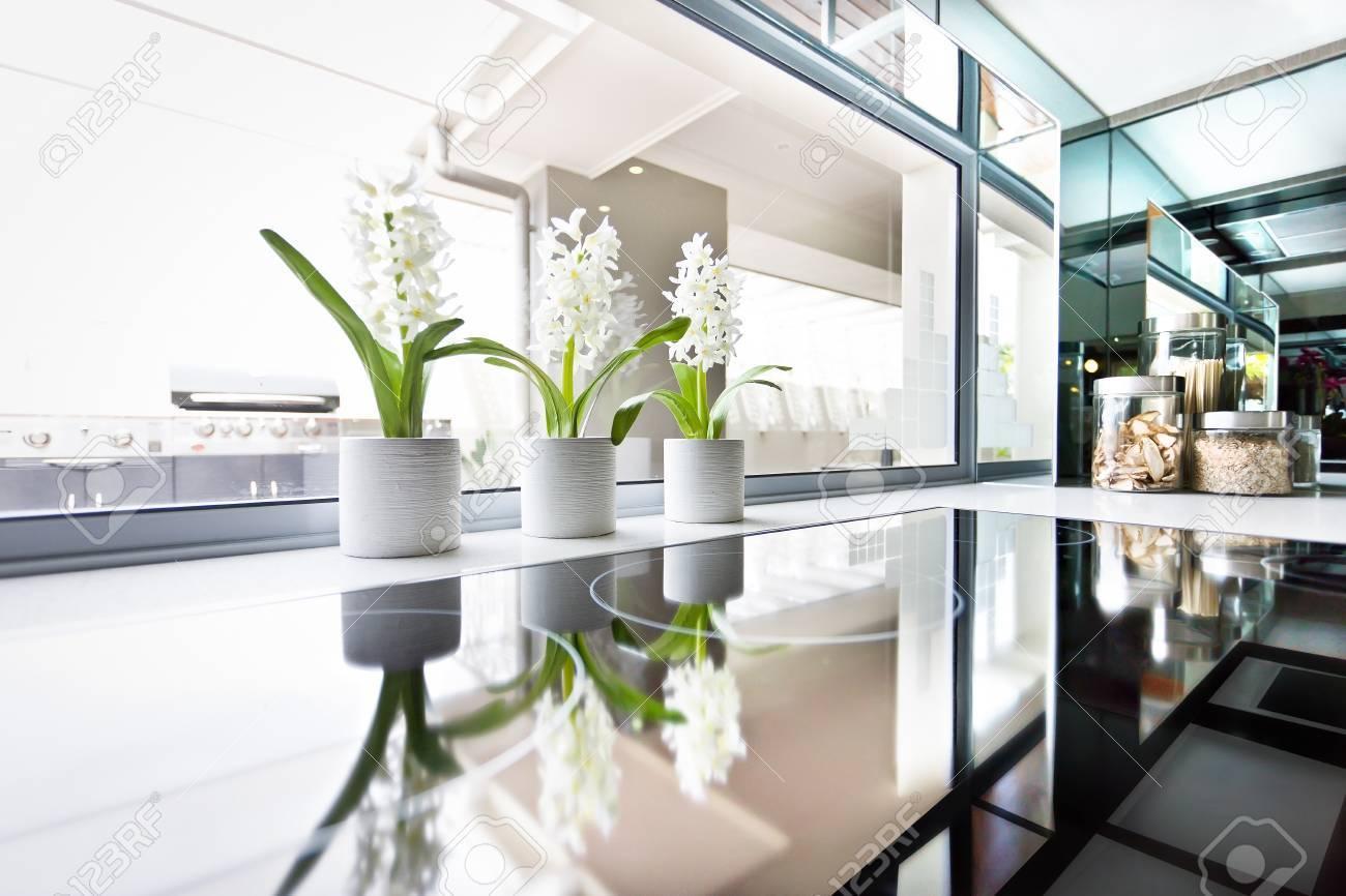 Stufa moderna vicino al lato delle piante da fiore e della finestra, la  stufa nero è lucido e riflettente che può essere visto molto da vicino alla  ...