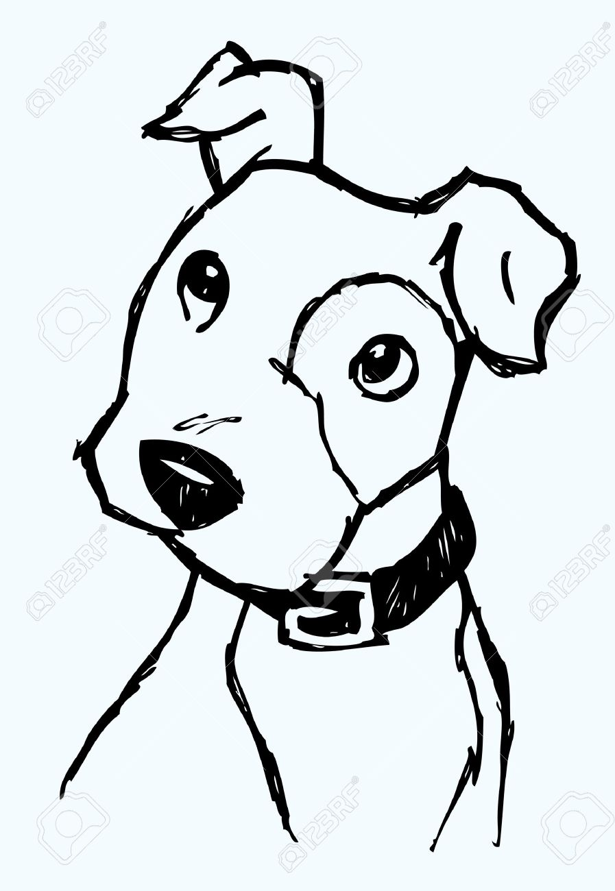 Puppy Face Sketch Stock Vector - 7558885