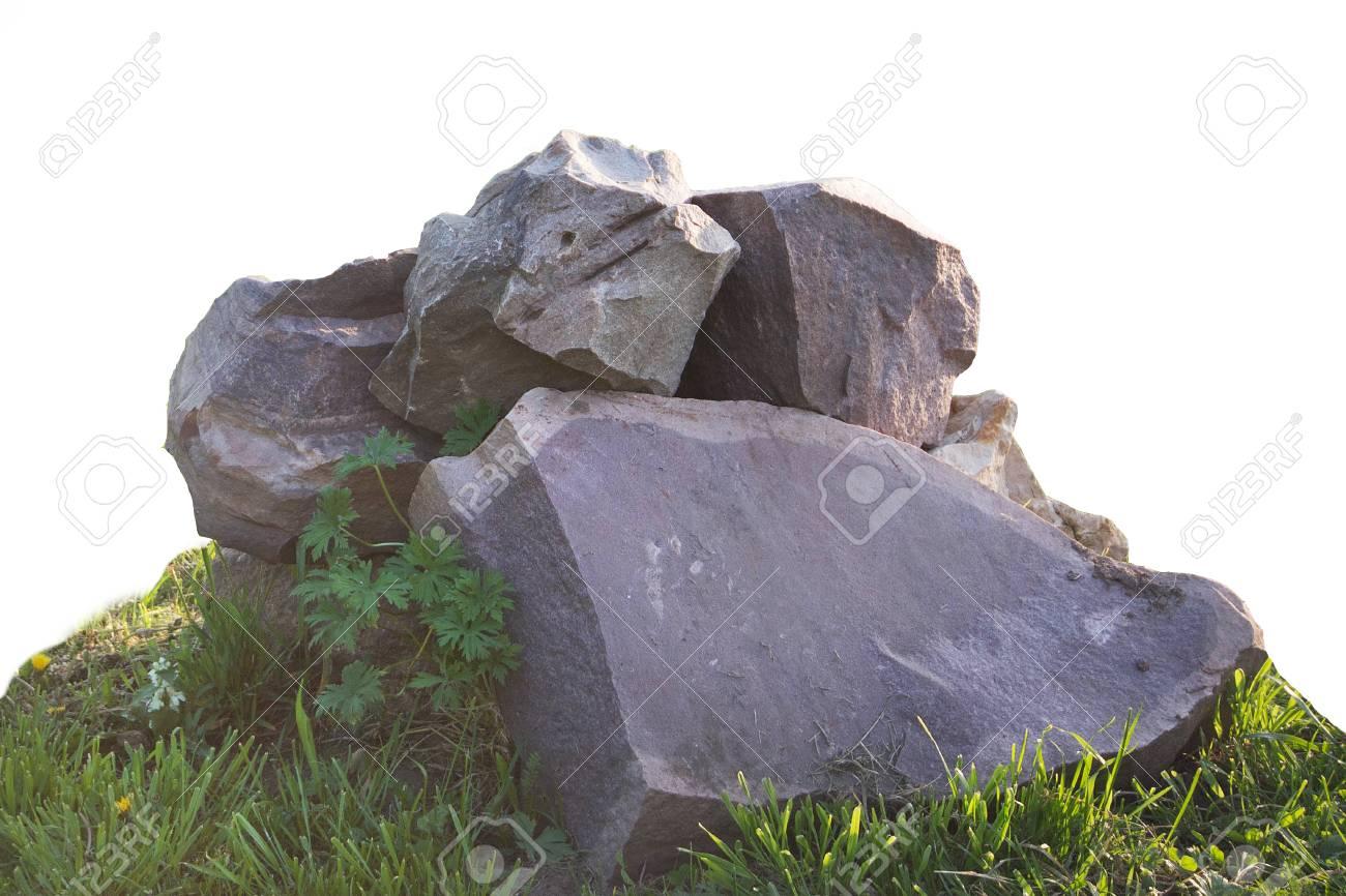 Schönes Strahl großen Schwanz