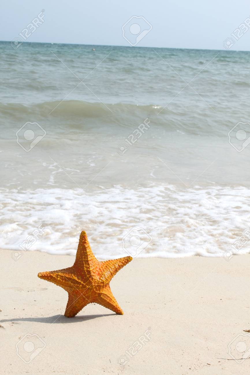 A starfish besides sea shore on a beach with white sand and blue water. Stock Photo - 6774968