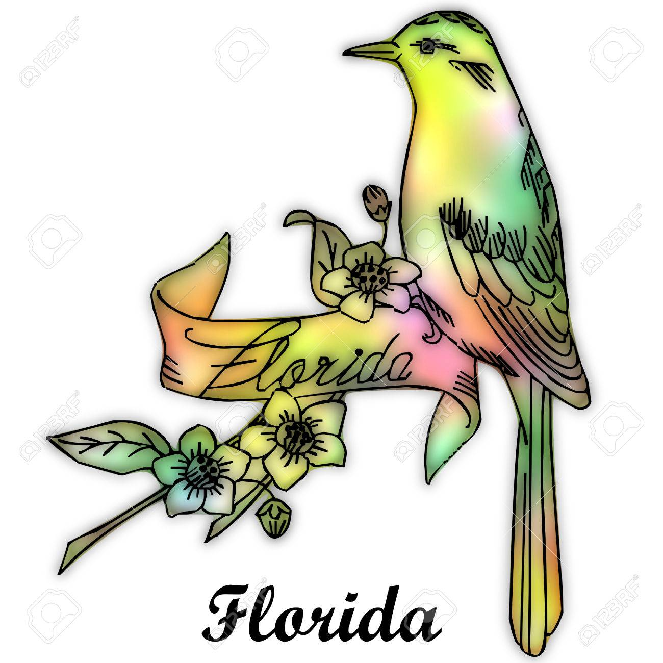 Florida State Bird Stock Photo