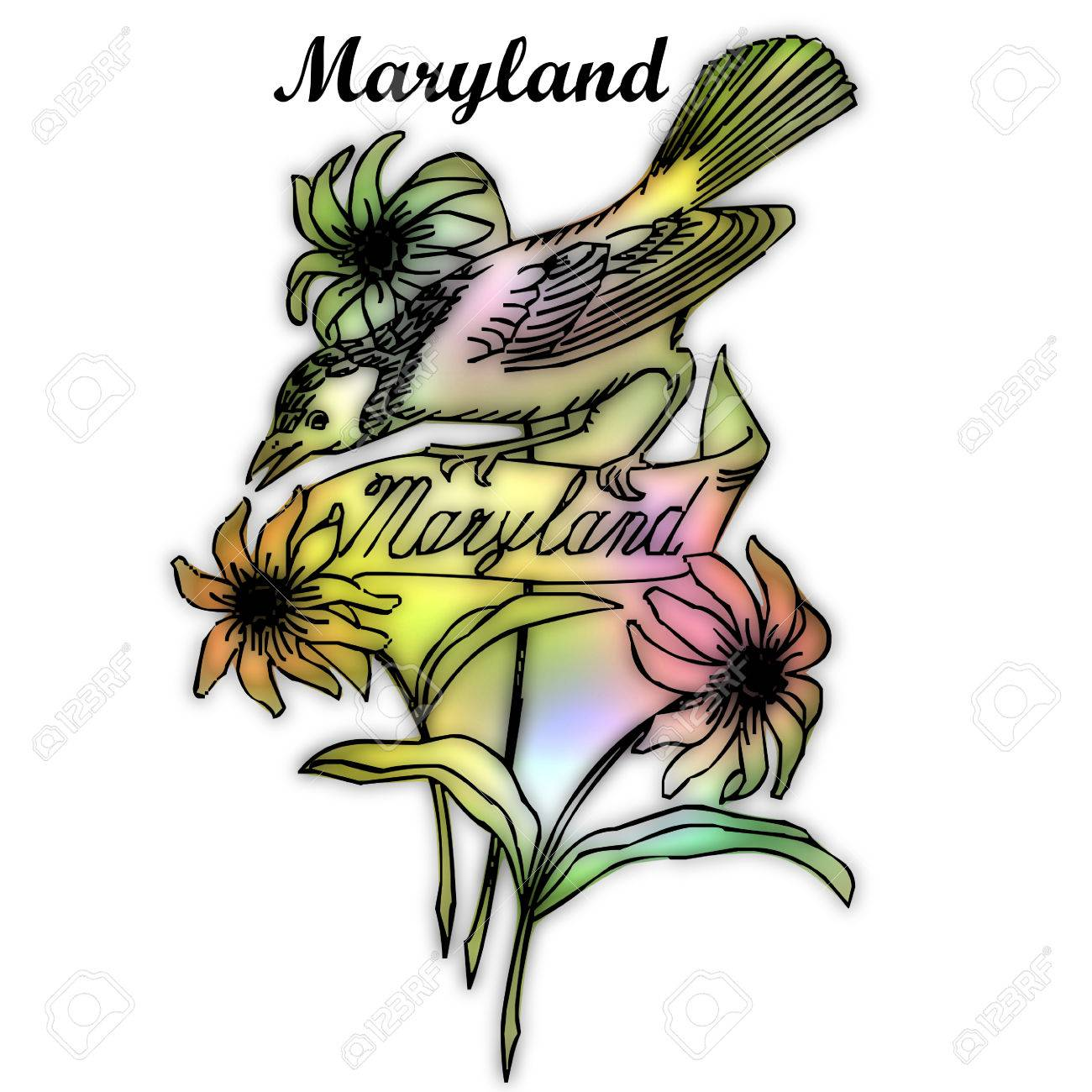 Maryland State Bird Stock Photo Picture And Royalty Free Image Image 30763951