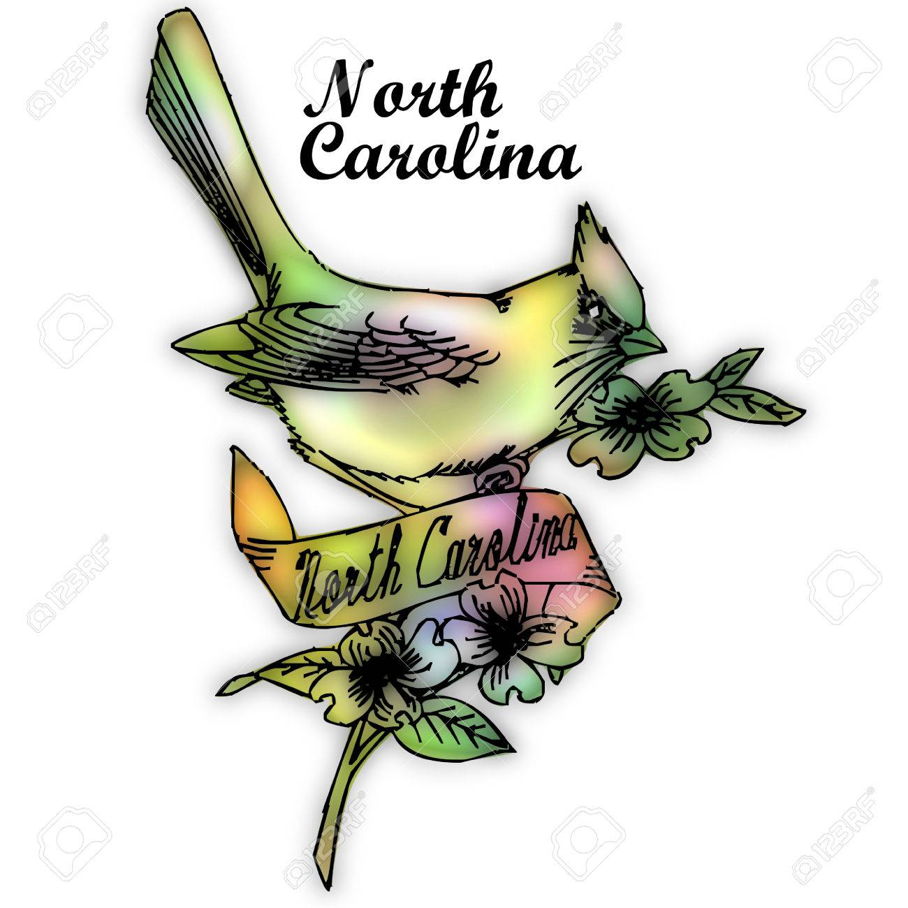 north carolina state bird stock photo 30763947