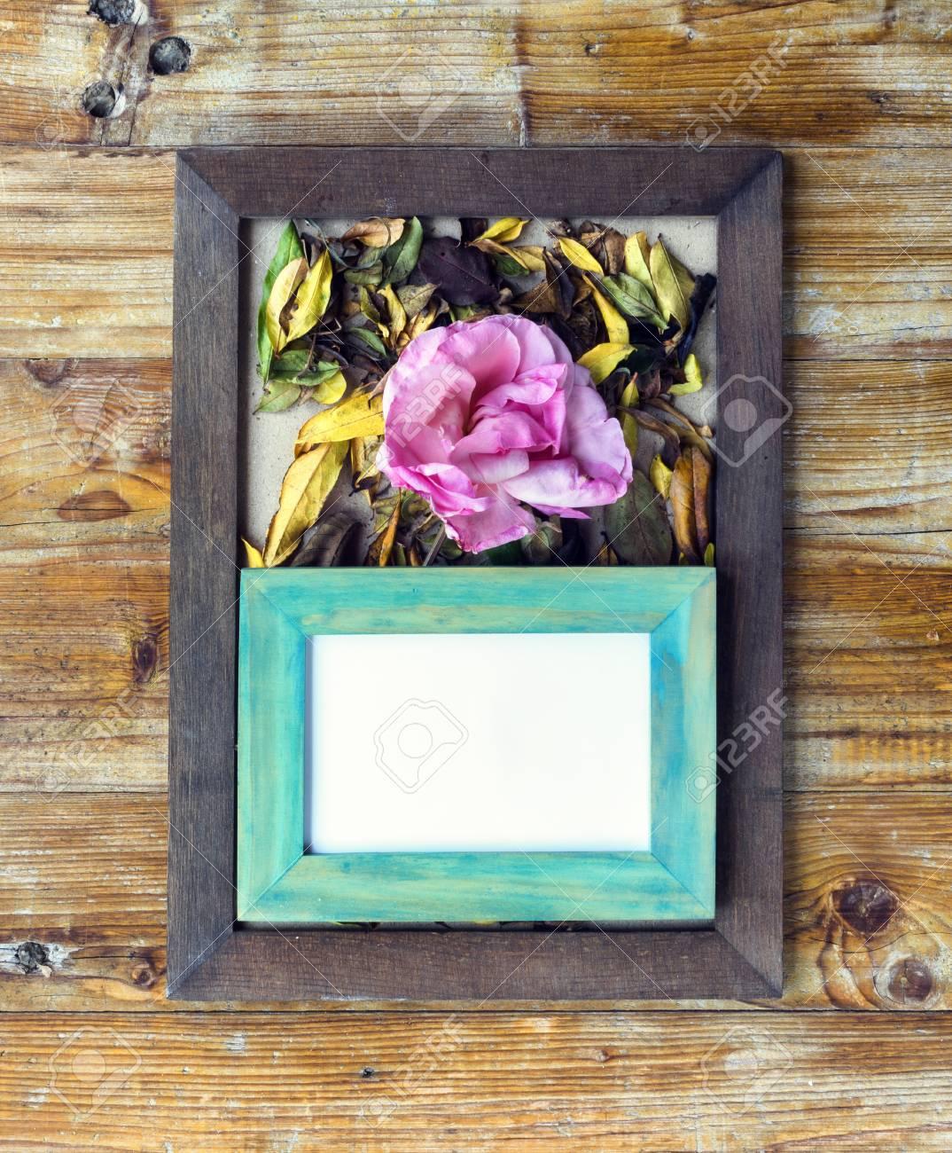 Marcos De Cuadros Concepto De Otono De Diferentes Colores Flores Y - Cuadros-diferentes