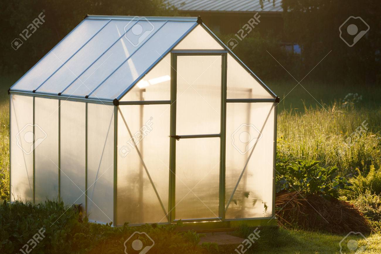 small greenhouse in backyard in a golden light of dawn stock photo