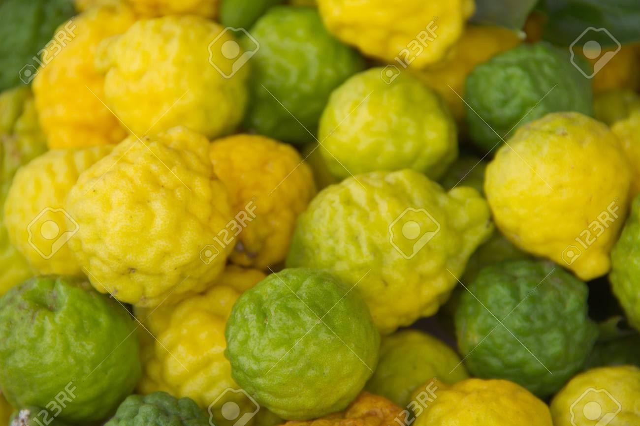 Kaffir lime Or Bergamot Fruit,This Fruit is Like Amazing Herb in Thailand Stock Photo - 16468869