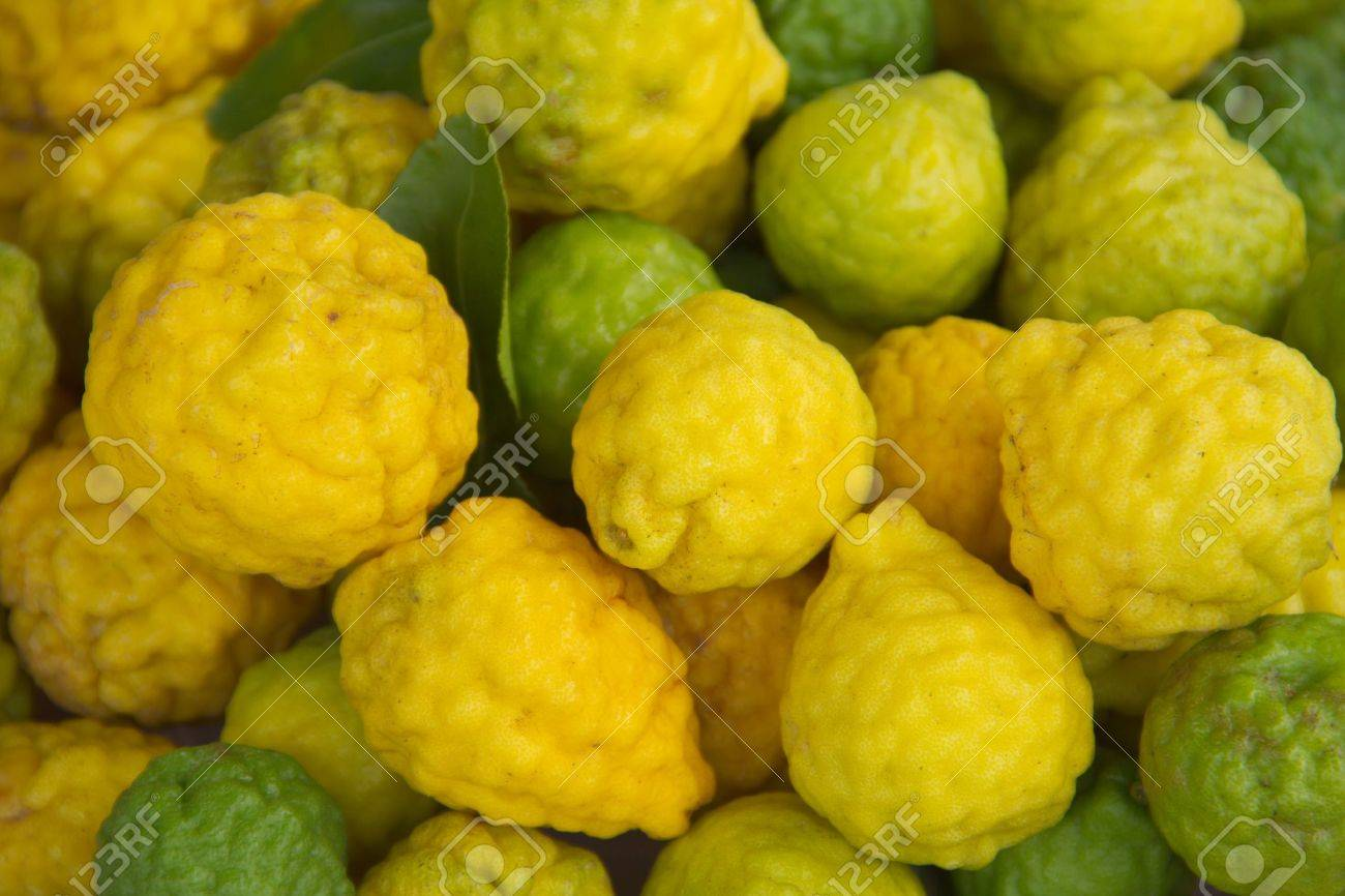 Kaffir lime Or Bergamot Fruit,This Fruit is Like Amazing Herb in Thailand Stock Photo - 16468874