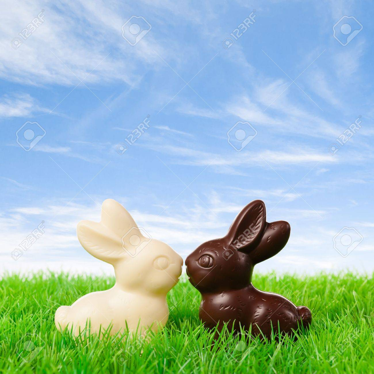 Black And White Chocolate Bunny Kissing On A Fresh Meadow Stock ...