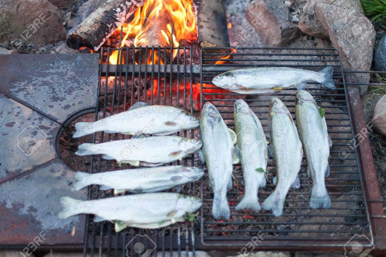 Cooking Fish On A Campfire Stock Photo
