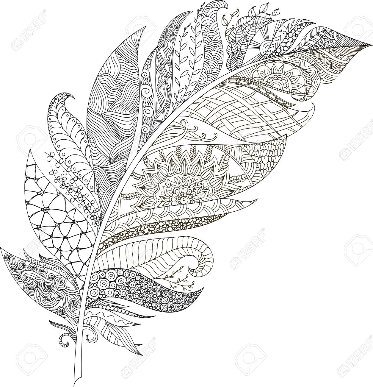 Drawing Feather Zentangle Style For Coloring Book Tattoo Shirt