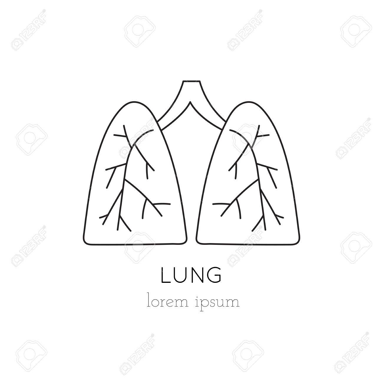 lungs thin line icon, logo template illustration. part of organ, Powerpoint templates