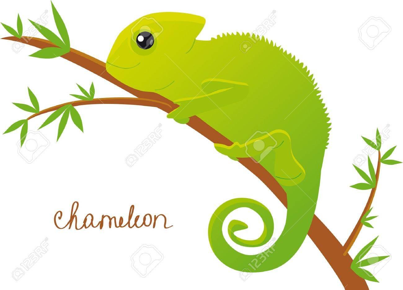 chameleon Stock Vector - 17218614