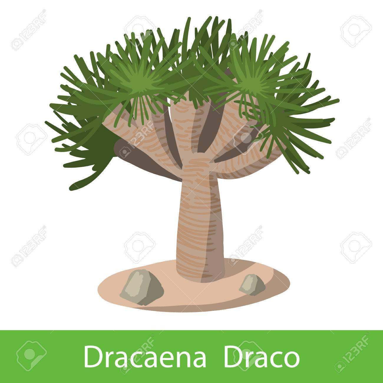 Dragón Icono De Color árbol Solo Símbolo De Dibujos Animados Sobre