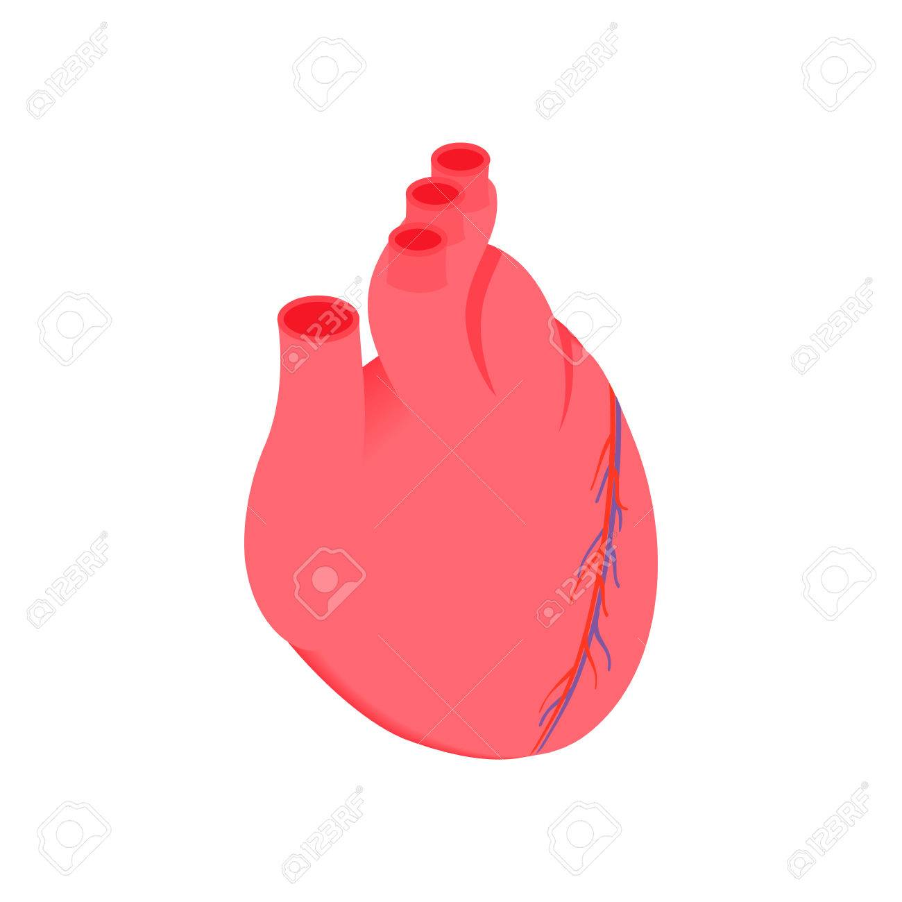 Anatomical Heart Isometric 3d Icon Pink Symbol On A White