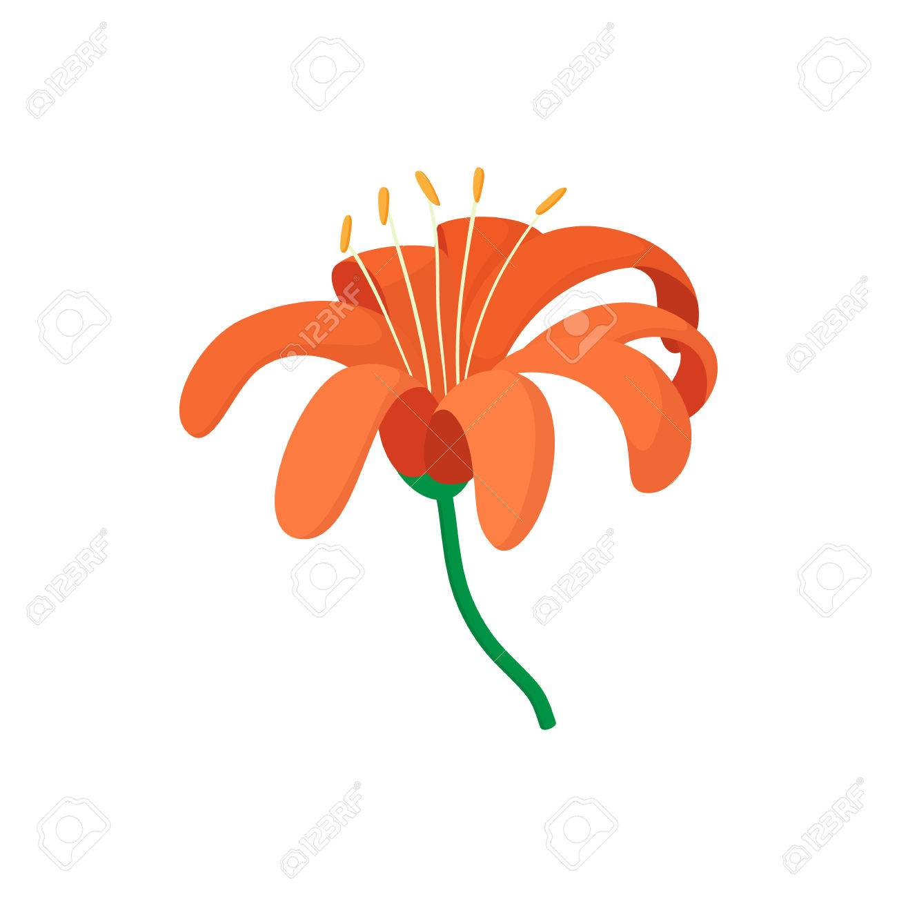 Orange lily icon in cartoon style on a white background royalty free orange lily icon in cartoon style on a white background stock vector 54597814 izmirmasajfo