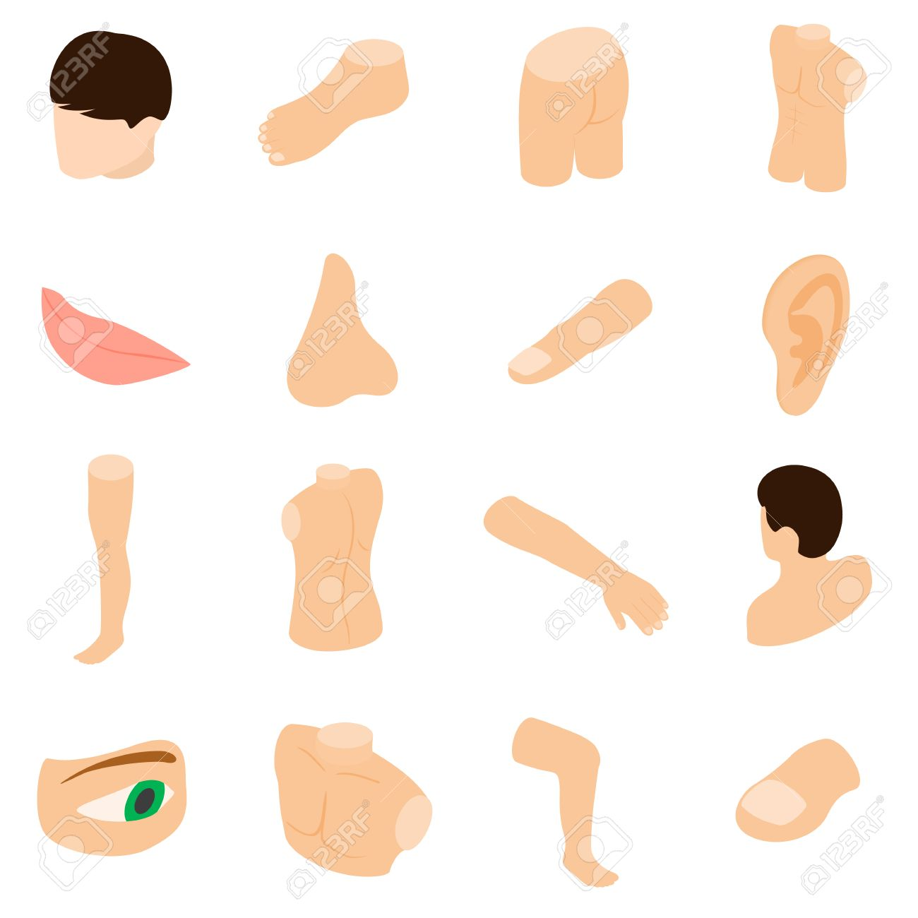 Body Parts Icons Set In Isometric 3d Style Isolated On White