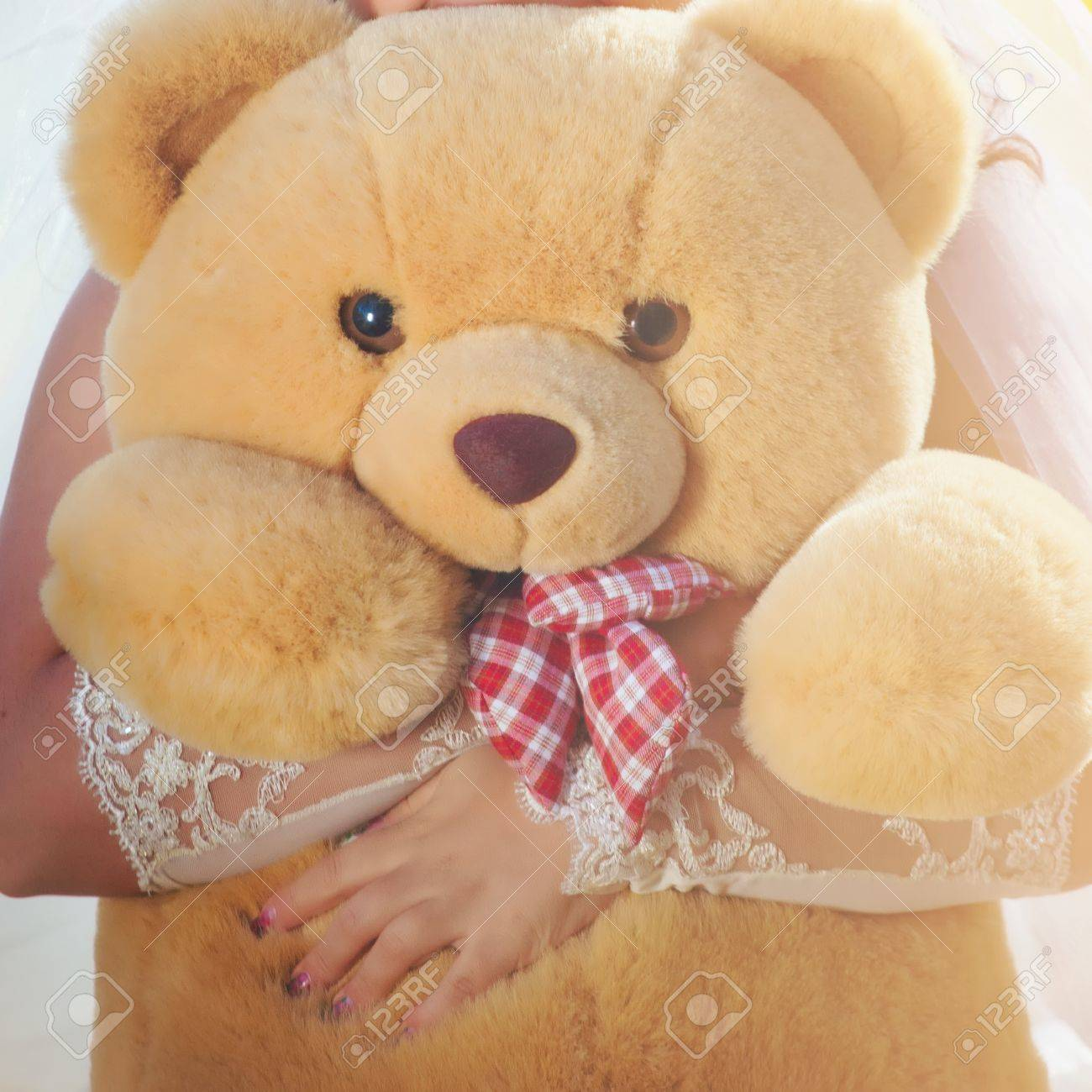 A light brown teddy bear in bride hands Stock Photo - 8394909