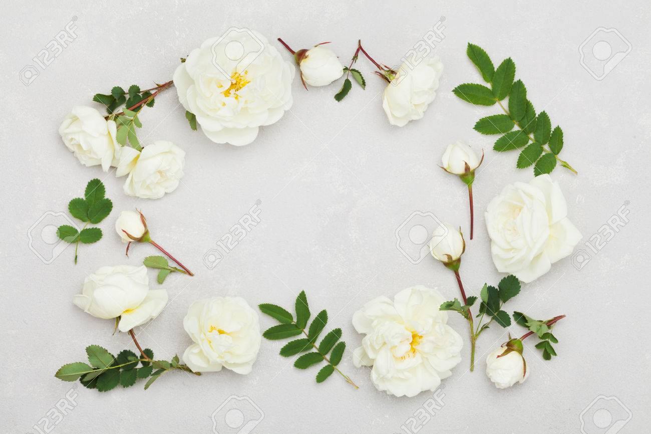 Frame Of White Rose Flowers And Green Leaves On Light Gray ...