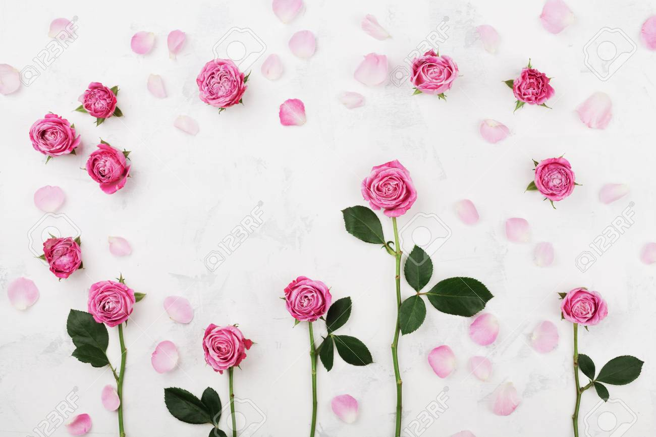 Beautiful pink rose flowers on white table top view wedding stock beautiful pink rose flowers on white table top view wedding mockup in flat lay style izmirmasajfo