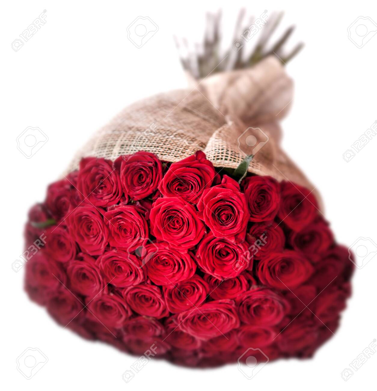 50 Roses In A Bouquet Stock Photo Picture And Royalty Free Image Image 146873199