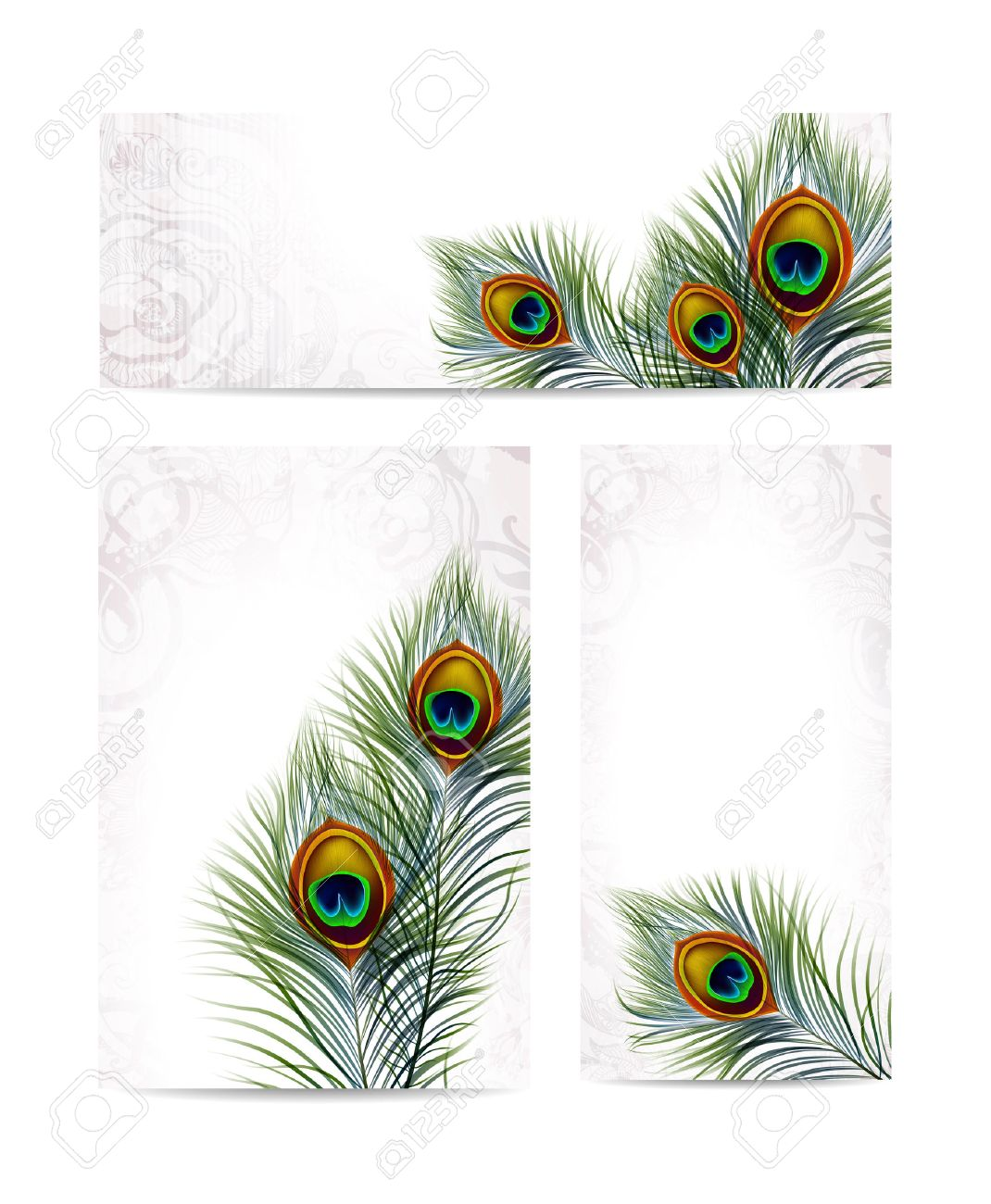 Beautiful vector peacock feathers on retro background with space for text. - 28054980