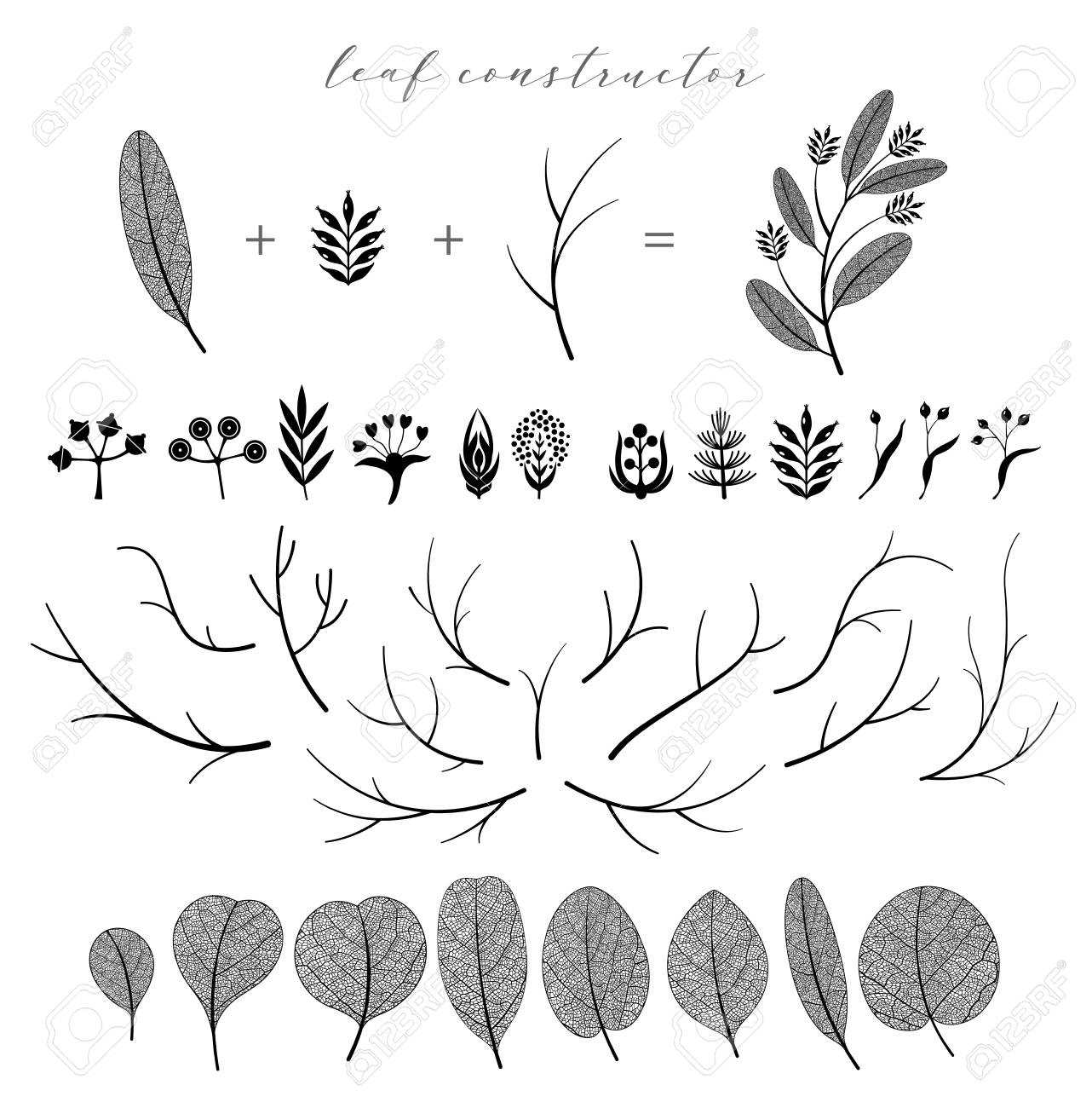 Big set of vector branch and leaf, fall, spring, summer. Detailed macro illustration, not autotrace, constructor - 109043428
