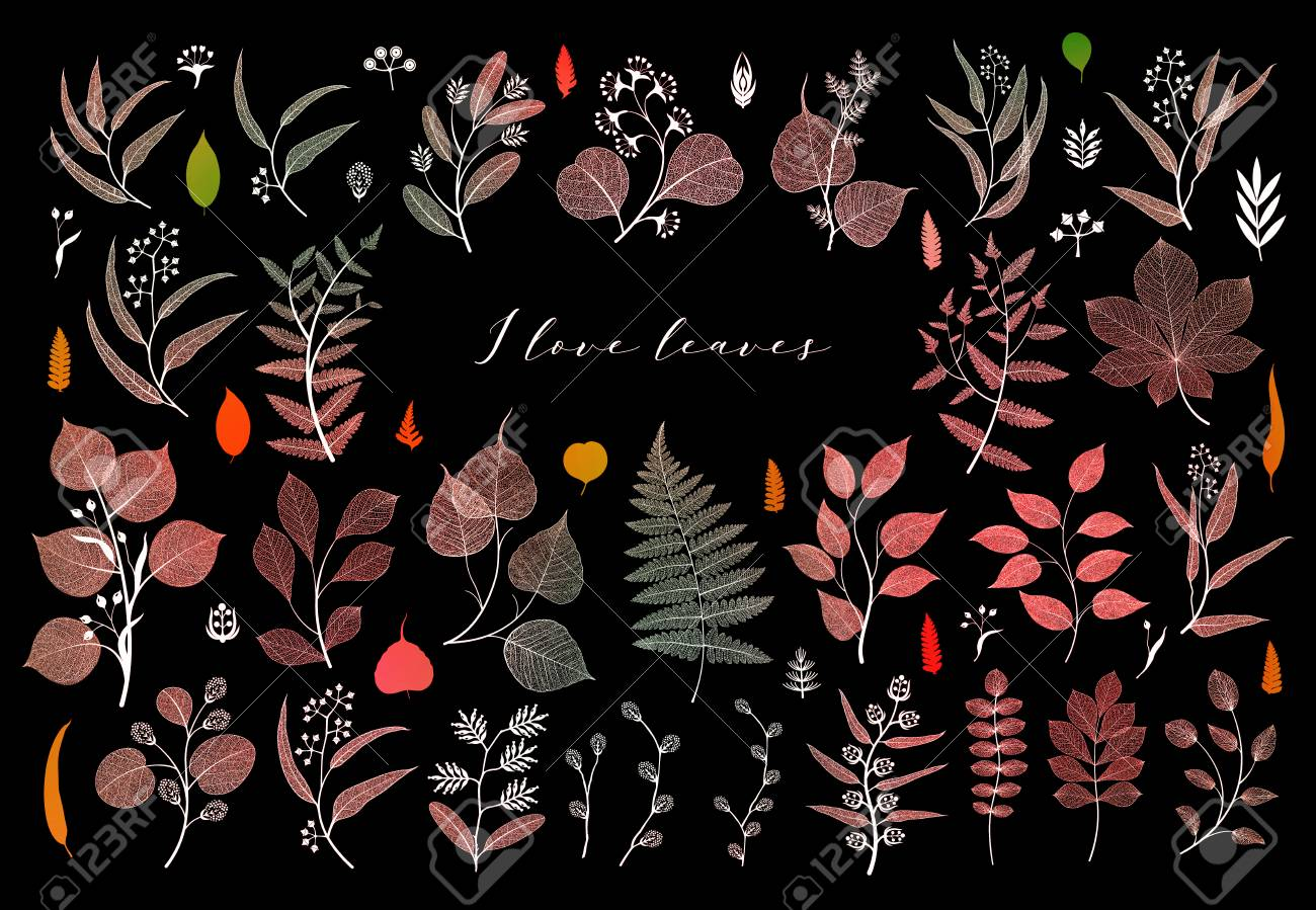 Branches and leaves, fall, spring, summer. Botanical illustration in bright colorful on black background - 109979421